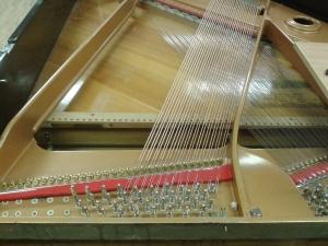 Cuerda4