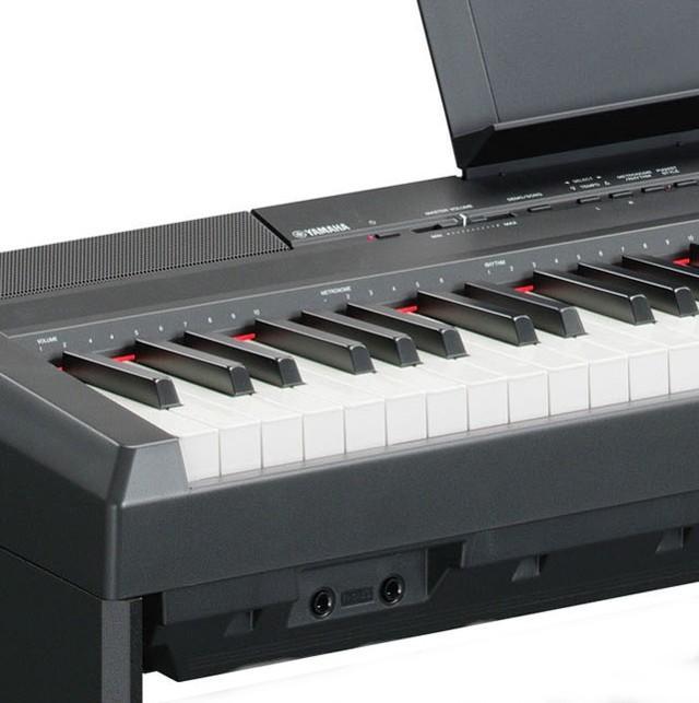 Yamaha P105b